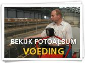 Foto_album_voeding_button.jpg